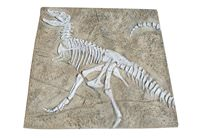 Dinosaur Fossil Dig - Large