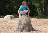 NaturePlay Stump - Large